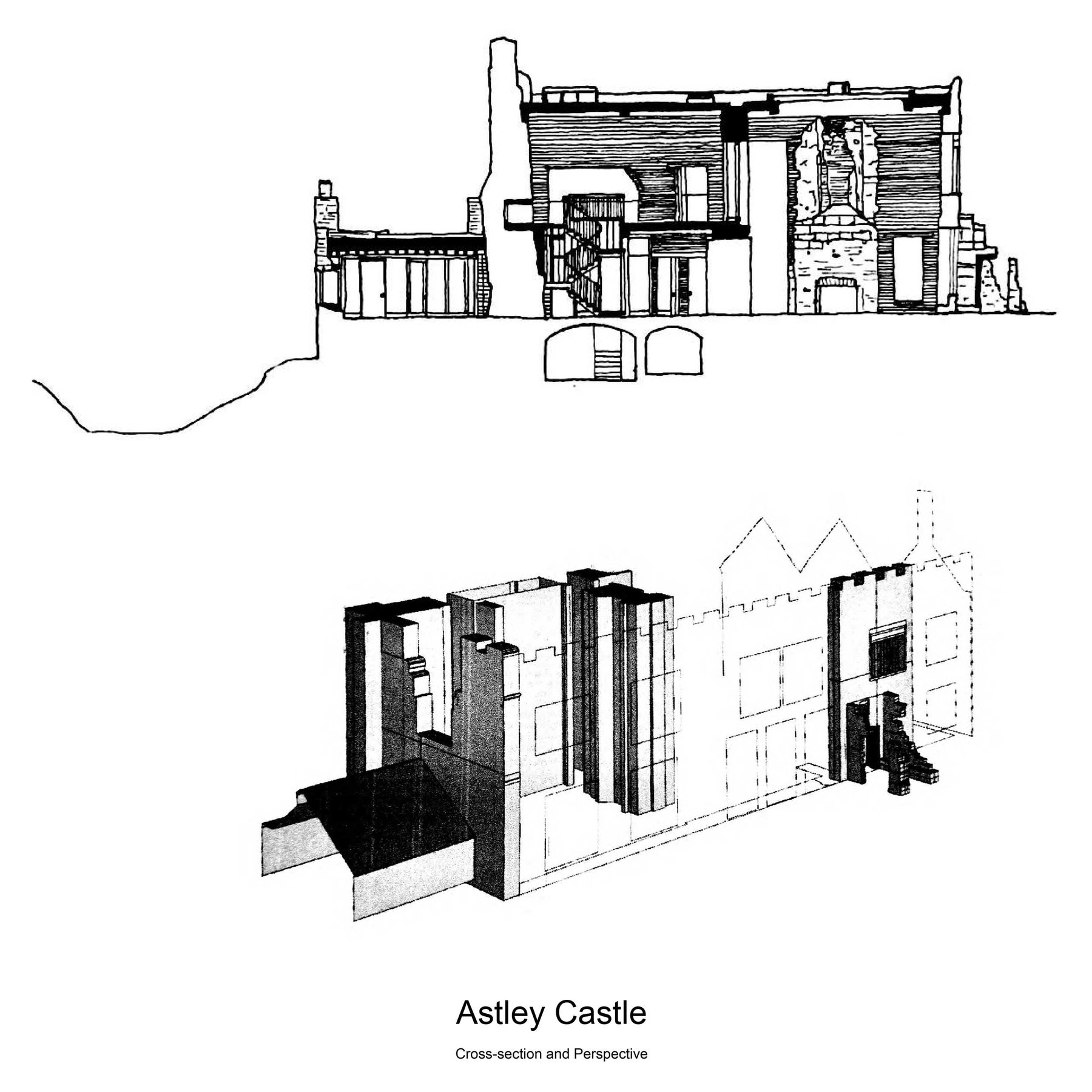 24-Rory-Farragher_Case-Study_Astley-Castle-Section-_-Perspective.jpg