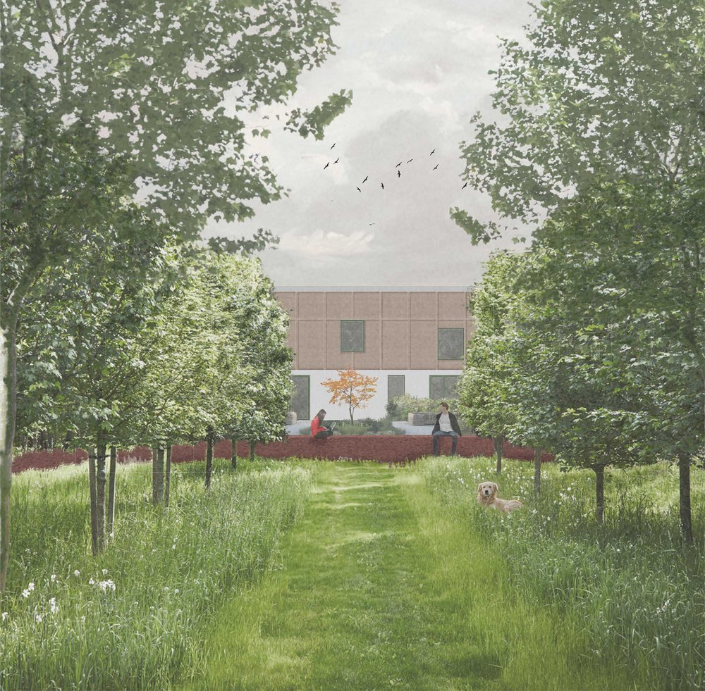 Morgan-Davies_External-visual,-The-communal-orchard-looking-onto-a-'private'-garden.jpg